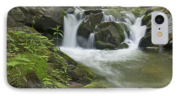 Big Pup Falls 3 Phone Case by Michael Peychich