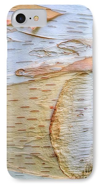 Birch Tree Bark IPhone Case by Todd Breitling