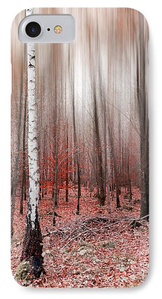 IPhone Case featuring the photograph Birchforest In Fall by Hannes Cmarits