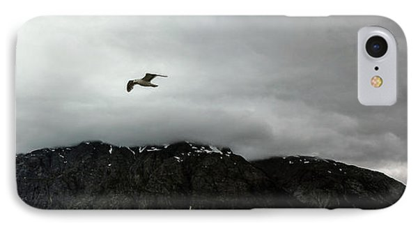 IPhone Case featuring the photograph Bird Over Glacier - Alaska by Madeline Ellis