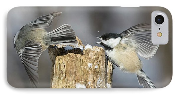 IPhone Case featuring the photograph Black-capped Chickadee In Winter by Mircea Costina Photography