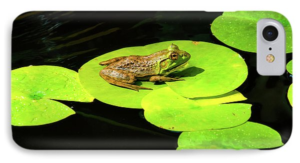 Blending In IPhone Case by Greg Fortier