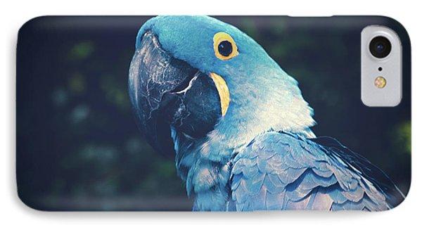 Blue Hyacinth Macaw IPhone Case by Sharon Mau
