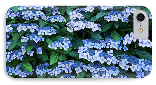 IPhone Case featuring the photograph Miksang 12 Blue Hydrangea by Theresa Tahara