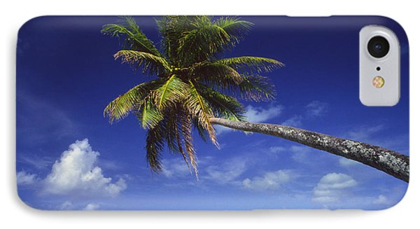 Bora Bora, Palm Tree Phone Case by Ron Dahlquist - Printscapes
