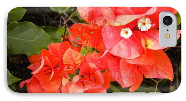 IPhone Case featuring the painting Bouganvilla 1 by Renate Nadi Wesley