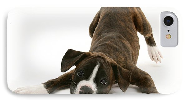 Brindle Boxer Pup Phone Case by Jane Burton