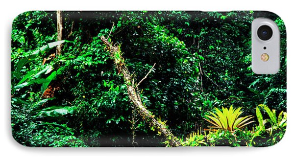 Bromeliads El Yunque National Forest Phone Case by Thomas R Fletcher