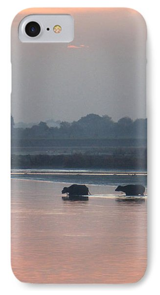 IPhone Case featuring the photograph Buffalos Crossing The Yamuna River by Jean luc Comperat