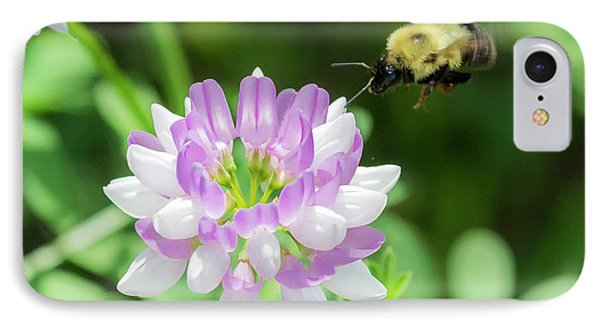 Bumble Bee Pollinating A Flower IPhone Case