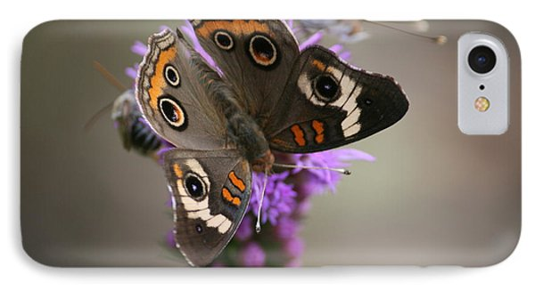 Buckeye Butterfly IPhone Case by Cathy Harper