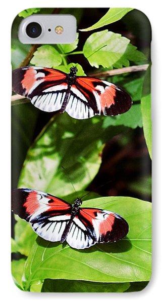 Butterflies IPhone 7 Case