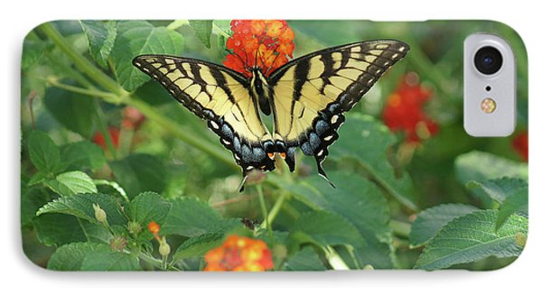 Butterfly And Flower IPhone Case by Debra Crank