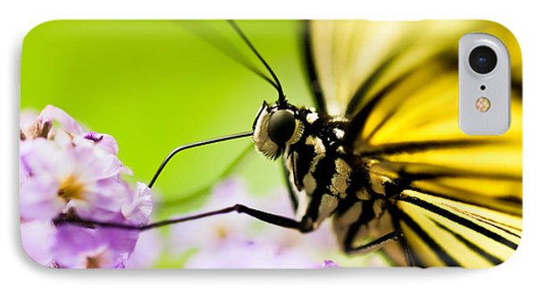 Butterfly IPhone Case by Sebastian Musial