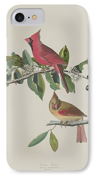 Cardinal Grosbeak IPhone Case by Rob Dreyer