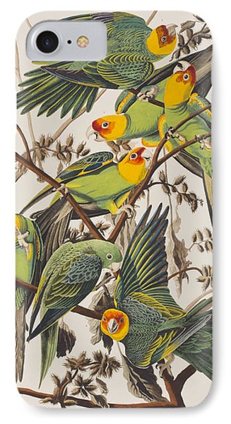 Parakeet iPhone 7 Case - Carolina Parrot by John James Audubon