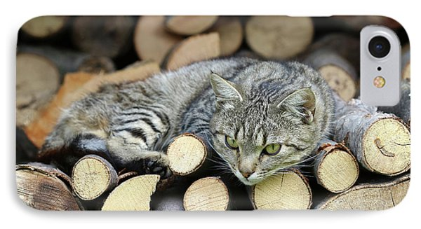 IPhone Case featuring the photograph Cat Resting On A Heap Of Logs by Michal Boubin