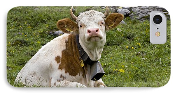Cattle, Switzerland Phone Case by Bob Gibbons
