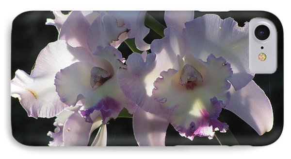 IPhone Case featuring the photograph Cattleya Orchid by Alfred Ng