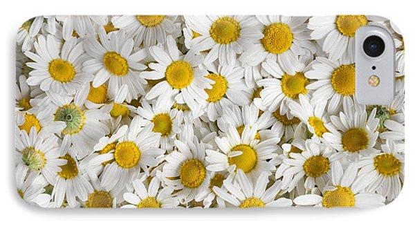 Chamomile Flowers Phone Case by Elena Elisseeva