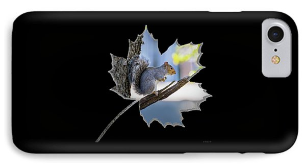 Change Of Seasons IPhone Case by Brian Wallace