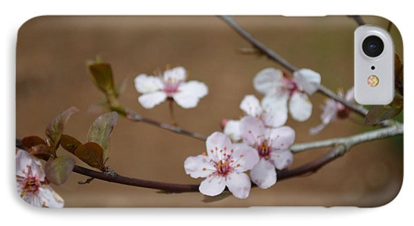 IPhone Case featuring the photograph Cherry Blossoms by Linda Geiger
