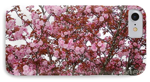 IPhone Case featuring the photograph Cherry Blossoms  by Victor K