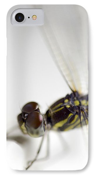 Close Up Shoot Of A Anisoptera Dragonfly IPhone Case