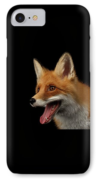 Closeup Portrait Of Smiled Red Fox Isolated On Black  IPhone Case by Sergey Taran