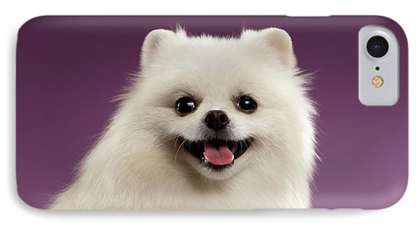 Closeup Portrait Of White Spitz Dog On Colored Background IPhone Case by Sergey Taran