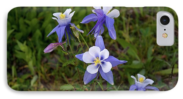 IPhone Case featuring the photograph Colorado Columbine by Steve Stuller