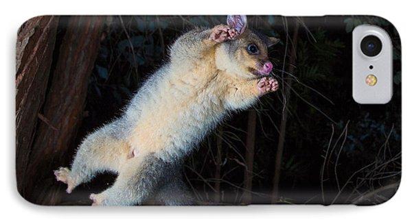 Common Brushtail Possum IPhone Case