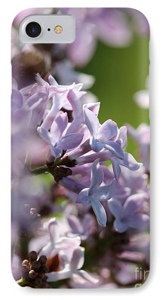 Common Purple Lilac IPhone Case