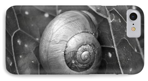 IPhone Case featuring the photograph Conch by Jouko Lehto