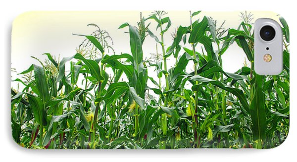 Corn Field Phone Case by Carlos Caetano