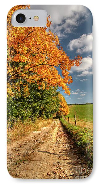 Country Road And Autumn Landscape Phone Case by Michal Boubin