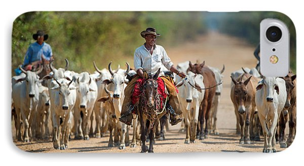 Cowboy Herding Cattle, Pantanal IPhone Case by Panoramic Images