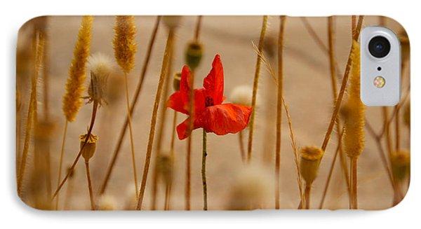Cretan Flower  IPhone Case by David Warrington