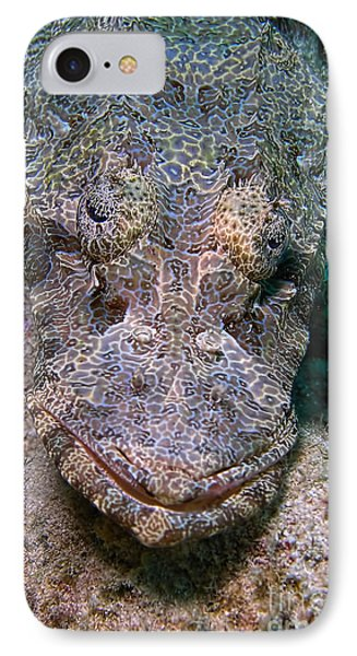 Crocodile Fish IPhone Case