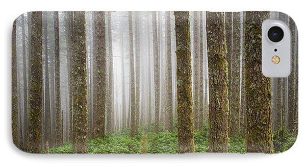 Cummins Wilderness Trail IPhone Case by Leland D Howard