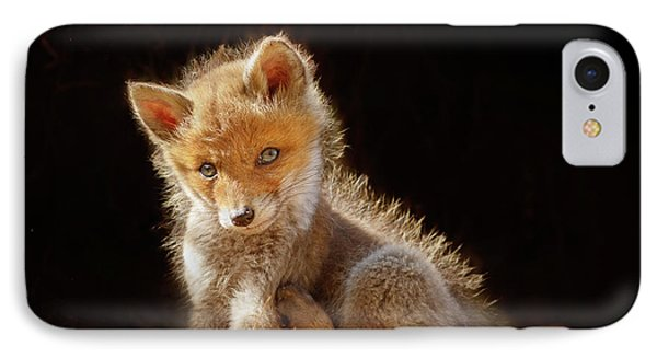 Cute Baby Fox IPhone Case