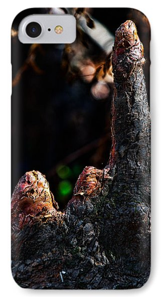 Cypress Knees Phone Case by Christopher Holmes