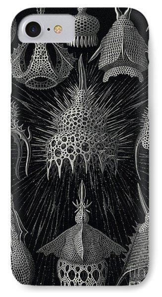 Cyrtoidea IPhone Case by Ernst Haeckel