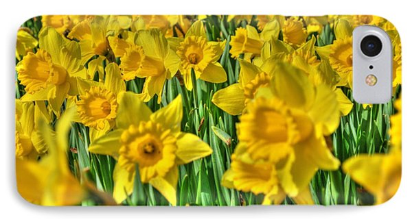 Daffodils Phone Case by Svetlana Sewell