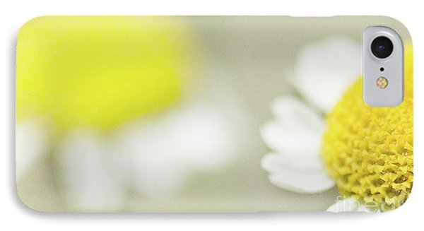 Daisies IPhone Case by Janet Burdon
