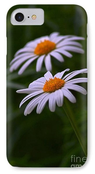 Daisies IPhone Case by Tim Good