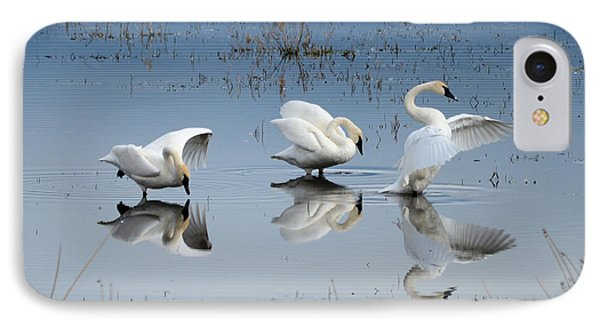 Dance Of The Trumpeter #1a IPhone Case