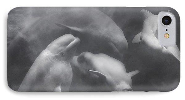 Dancing Belugas  IPhone Case by Betsy Knapp