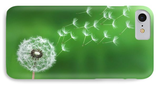 Dandelion Seeds IPhone Case by Bess Hamiti