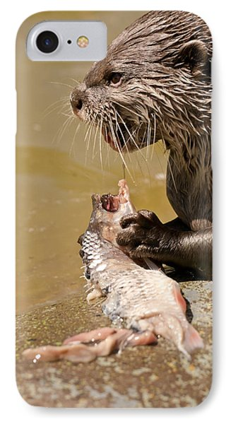 Dinner Time IPhone Case by Scott Carruthers